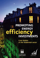 "Book cover ""Promoting Energy Efficiency Investments"""